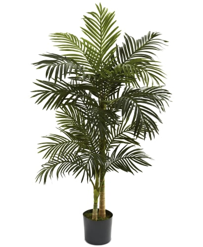 Nearly Natural 5-Foot Golden Cane Palm Tree for $66 + free shipping