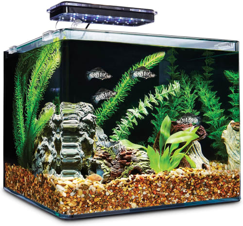 Imagitarium. 6.8-Gallon Frameless Freshwater Aquarium Kit for $53 in cart + pickup
